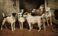 Terriers at a Stable Door, 'A Distant Relative'